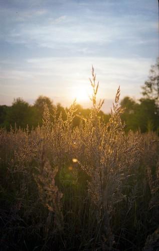 sunset sun nature field poland polska 35mmfilm praktica analogphotography czestochowa częstochowa prakticabc1 simstorm