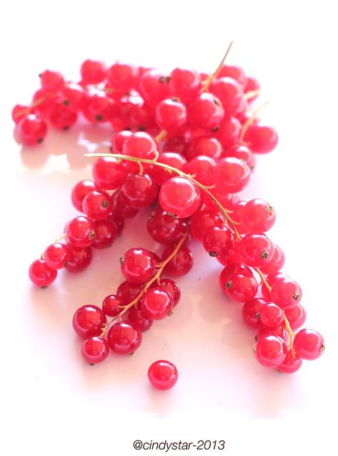 röda vinbär-redcurrant-ribes rosso