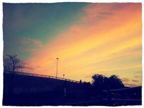 sunset nature silhouette thames reading riverside romantic colourful flickrandroidapp:filter=chameleon