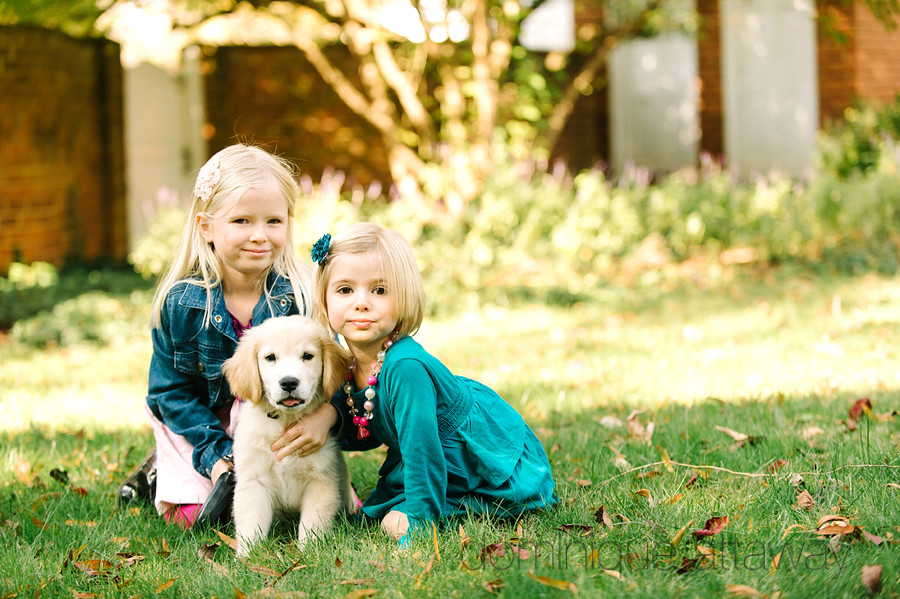 10804644425 3138d82fe0 b Family portraits with a puppy