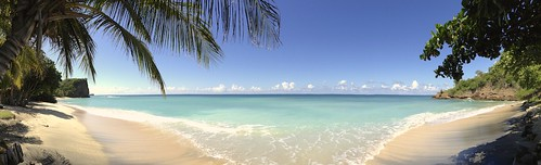 sea panorama seascape beach landscape palm grenada caribbean pan 365 iphone 365project iphone5 iphoneography 3652013