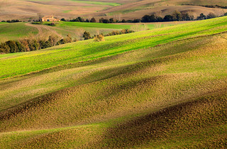 Fields of Tuscany (Explored)