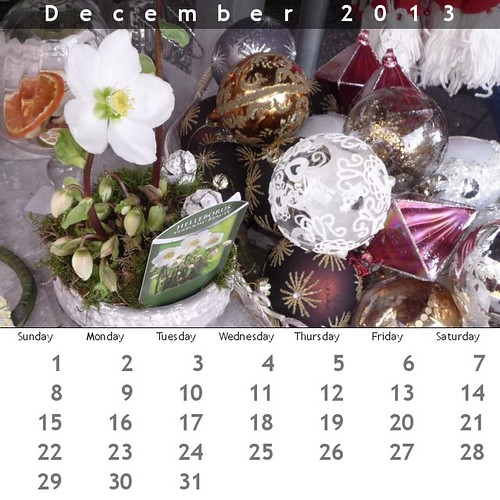 Calendar December 2013 by Ginas Pics