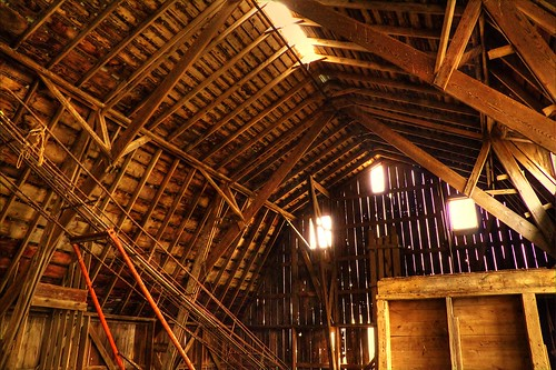 Barn Rafters-HDR