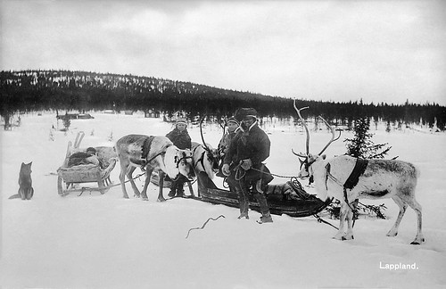 Sami family with reindeer, Jukkasjärvi, Lappland, Sweden