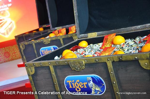 TIGER Presents A Celebration of Abundance 10