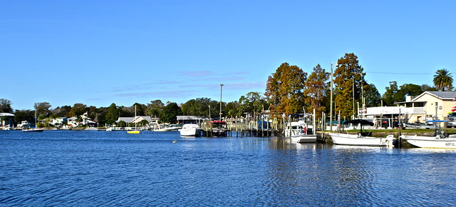 view of kings bay, crystal river florida
