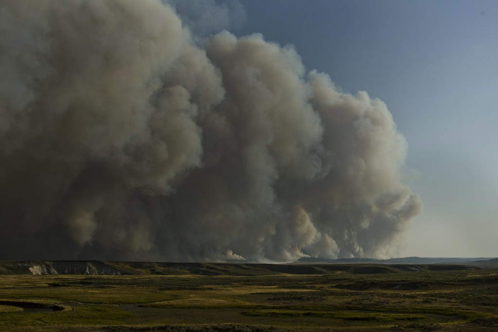 Fire in Yellowstone