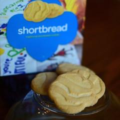 meal(0.0), breakfast(0.0), icing(0.0), dish(0.0), junk food(1.0), baking(1.0), sweetness(1.0), baked goods(1.0), cookies and crackers(1.0), food(1.0), dessert(1.0), cookie(1.0), snack food(1.0), biscuit(1.0),