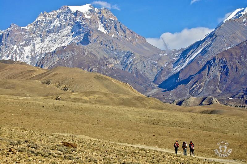 WATP NEPAL 763