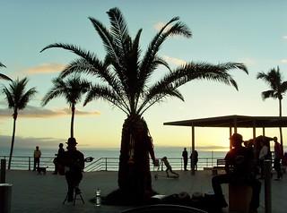 15 Palm op La Palma