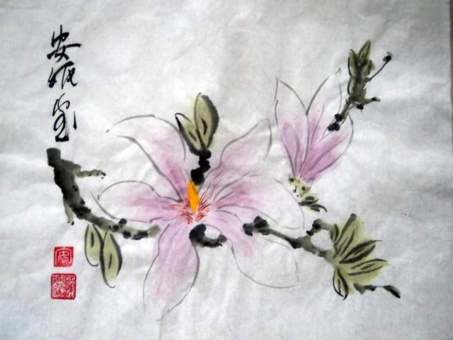 magnolia  by Annie Holland
