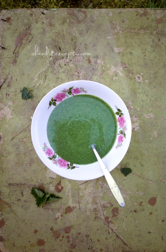 Urtica soup