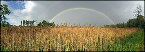 sky storm field rain rainbow meadow