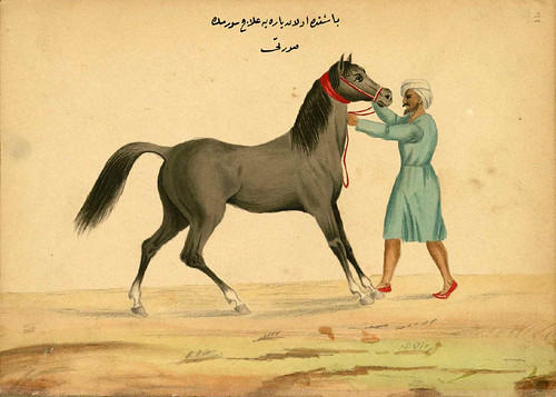 008- Vendaje de la cabeza de un caballo -Walters manuscrito W.661- fol 78 a.-The Art Walters Museum