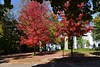 Autumn Glory in Chagrin Falls