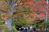 Photo:青森県 黒石市 中野楓葉山 By ansel.ma