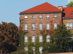 Królewskie-Miasto-Kraków  Herbst jesień 2016