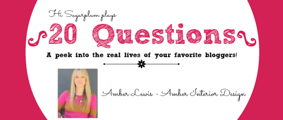 20 questions Amber