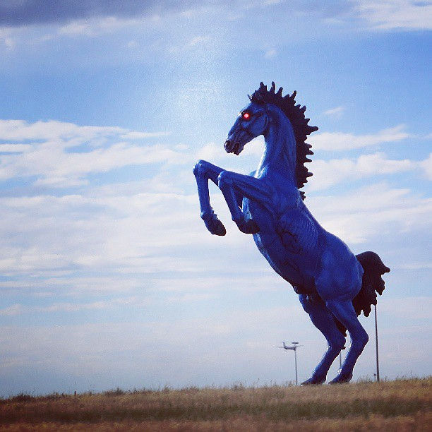Address It As Devil Horse, Blucifer, Satan's Steed Or The