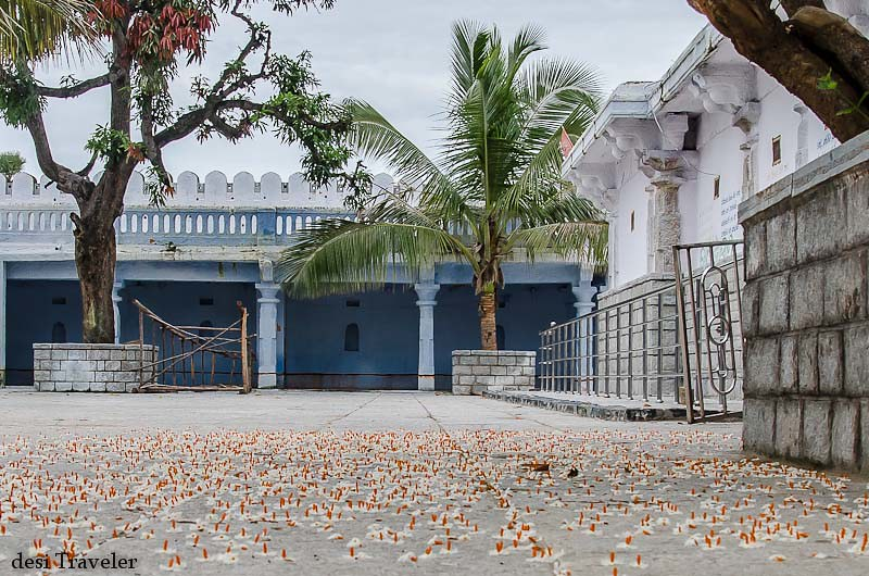 Fragrant orange Harsingar or Parijat floweres carpet in ammapalle temple courtyard