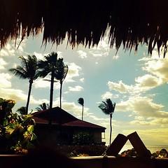 This was taken from a seaside hammock, BTW.