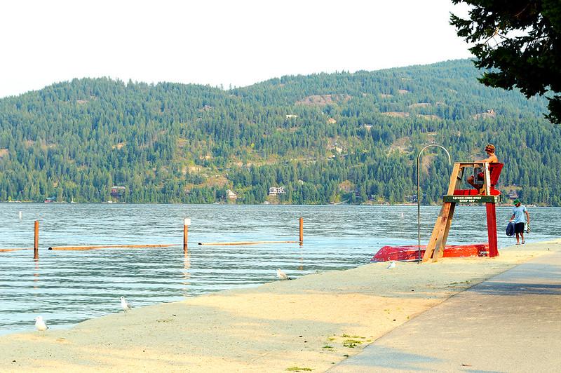 Lake Life Guard
