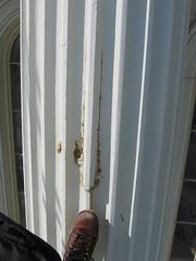 U.S. Capitol Dome Damage in Need of Repair