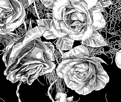 01_Rose