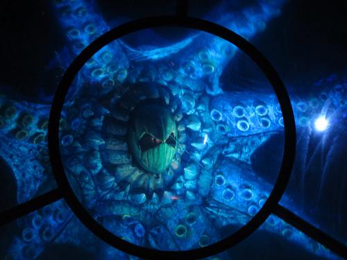 The kraken attacks!