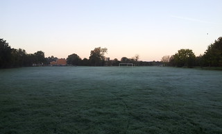 First frost!