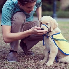 Adam Kline has started an organization on campus where students can raise and train service dogs. He and Kipper have become best buds and Tulane celebrities #onlyatttulane #tulane