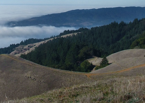 The view from Mt Tamalpias