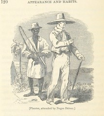 """British Library digitised image from page 144 of """"Jamaica: its past and present state"""""""