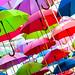 Umbrellas by essexdiver