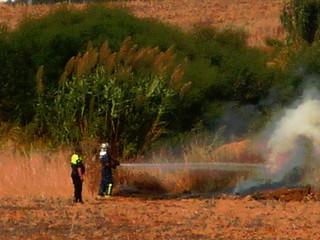Bomberos löschen Bauhütte und Bambusbüsche