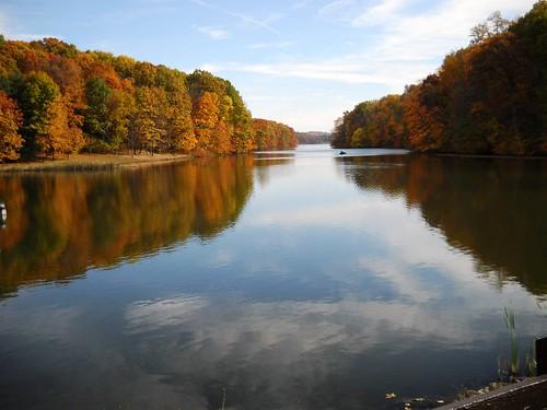 park county lake belmont barkcamp