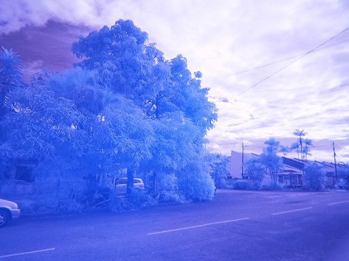 Shooting with an Infrared Filter (IR72)