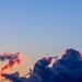 Cloud Dromedary