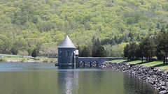 Sayville Dam