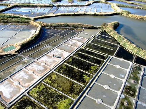 de nouvelles photos aériennes des marais salants de Guérande 14464266171_7553c0cbbd