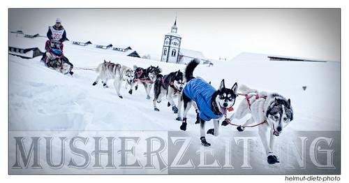 Femundløpet 2013: Guy Trannois (FRA) and dog team is leaving Røros, Norway