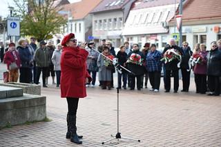 11. 11. 1918 skončila 1. svetová vojna. Na túto udalosť spomíname aj dnes pri pamätníku obetí 1. svetovej vojny v Stupave. 11. november je preto zároveň Deň vojnových veteránov