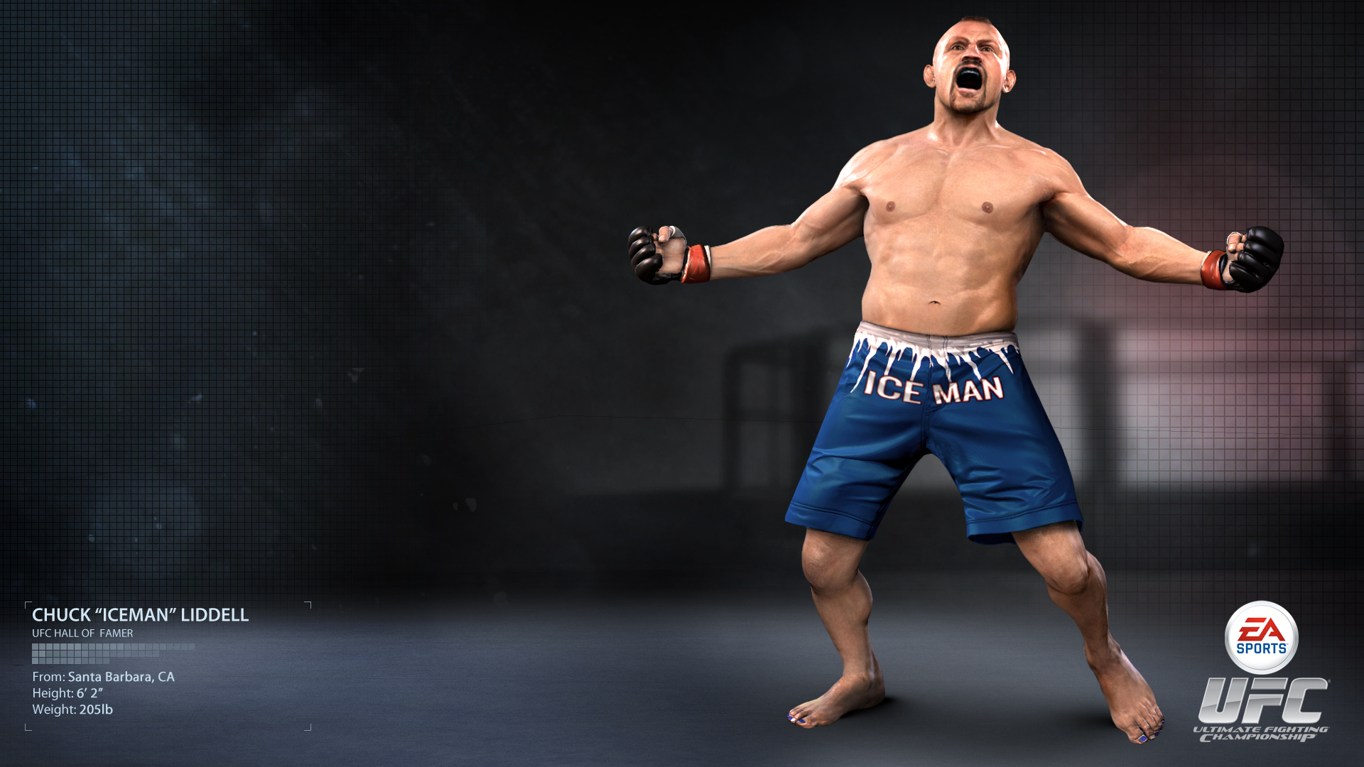 Ea Sports Ufc Wallpapers