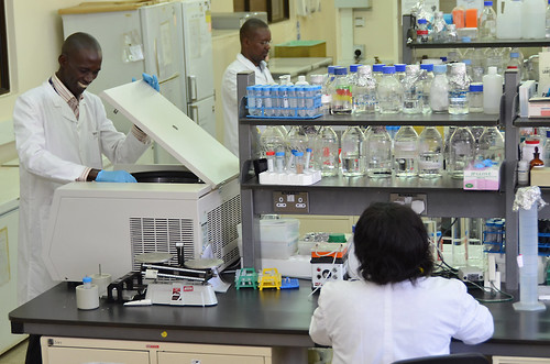 ILRI Biotechnology research