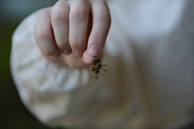 Pavlenko holds wasps on Spangdahlem Air Base