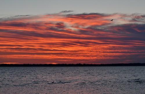 ri beach sunrise rhodeisland longmeadow warwickri