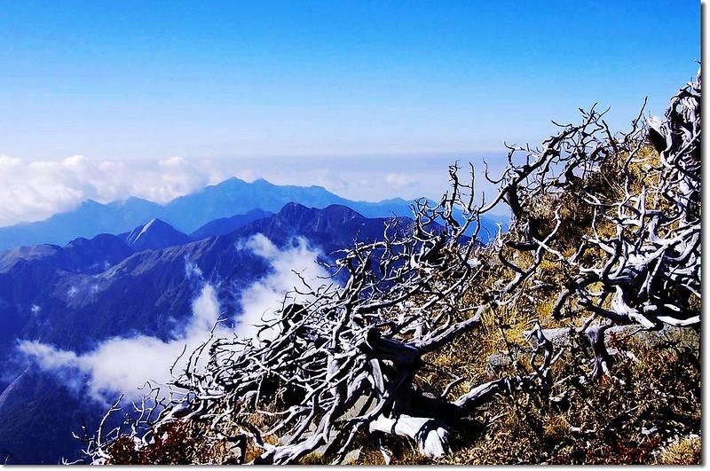 大小劍、白姑山群(From 雪山頂西南眺) 3