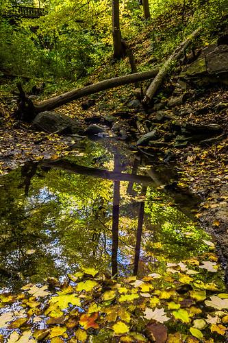 autumn trees wisconsin reflections colorful fallcolor unitedstates grantpark 7bridges 2013 southmilwaukee