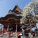 古寺に詣でる - Old temple in spring -